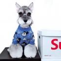 ディズニーコラボ ミッキーマウスドッグセーター ふわふわ 犬の洋服 クリスマス用 猫服 犬猫用品 小型犬/中型犬向け おでかけ 散歩用