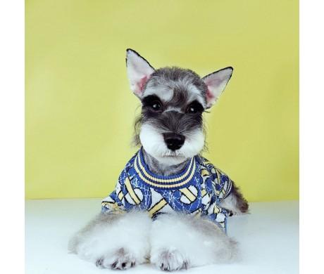 冬のお散歩ブランドバーバリー ペット服 あったかくて可愛すぎる【コピーペット用犬服特集】