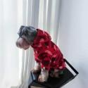 韓国チャンピオンペット犬服パロディ パーカー春秋冬服 かっこいい防寒 可愛い 最安価格 人気 綿製Championペット服帽子付きパーカーおしゃれ 通気性抜群 かわいい犬猫服ファッション感