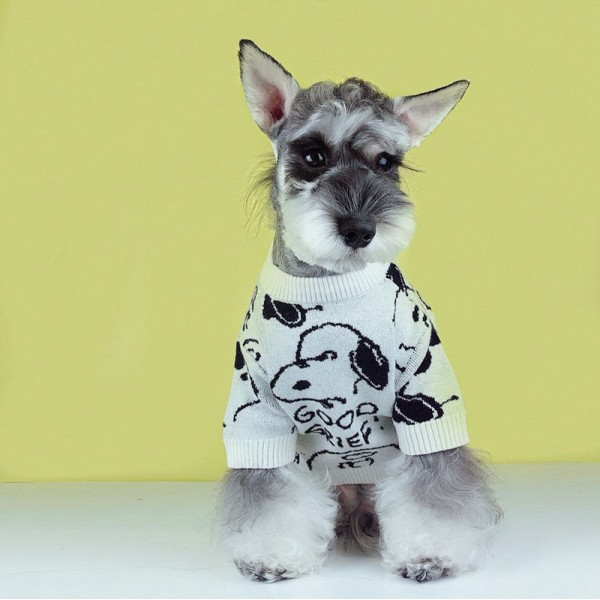 超かわいいスSnoopy柄 ペット洋服 冬 犬 猫 怒っているスヌーピ ピーナッツ漫画 セーター 洗える ふわふわ お洒落 小型犬用品 子犬XSサイズ 愛犬愛猫グッズ かわいい 暖かいドッグウエア