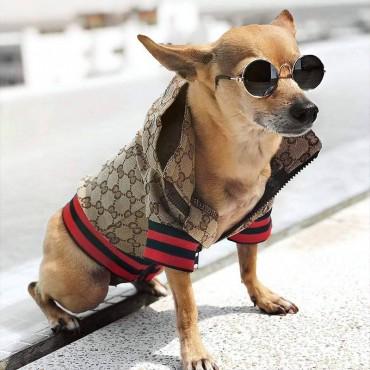 GG 犬服 ワンちゃん用 ドッグウェア ブランド ベーシック GG かわいい チワワ 犬服 ダックス コピー トイプードル gg マルチーズ 冬服 傷なめ防止 犬洋服 偽物 抜け毛対策 小型犬 ペット服