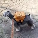 エムシーエム 犬のバッグ  ドッグ グッズ ファッション ブランド 鞄 かわいい 小中大型犬に向け MCM ミニバッグ ペット用品 オシャレ お散歩お出かけ