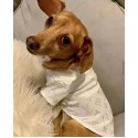 ルイヴィトン 犬服 ペット用品 シンプル 犬シャツ LV ブリティッシュショートヘア ドッグウェア 両足 ハンサム小型犬 猫服 ペット散歩用 ブランド おでかけ ペット服 皮膚病犬 猫服 犬用ラペル ポロシャツ コピー