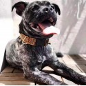 ブランド フェンディ ペット用品 ドッググッズ Fendi 犬の首輪リード ハーネル セット 丈夫 ロック付き バックル 安全 首輪 小型犬 中型犬 大型犬 犬用牽引ロープ オシャレ耐久性 調整可能