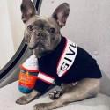 Givenchy ブランド ジバンシィ ペットウェア 犬服 セーター 黒色 パーカー ドッグウェア 秋冬 厚い 保温 かわいい 小型犬用品 ニットセーター トイプードル/テディー/シュナウザー小型犬 対策 ロゴ付き