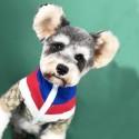 GGペット服 犬ジャケット ブランド コピー 犬服 猫コート ペットウェア 厚手 ファッション 秋冬適応 柔らかい ファスナー開閉 着こなしやすい ドッグウェア かわいい