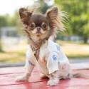 GGペット用品犬服犬のセーターかわいい柄ジャガードハート型猫ジャケットドッグウェアボタン付き着脱やすい秋冬ニットカーディガン おしゃれ