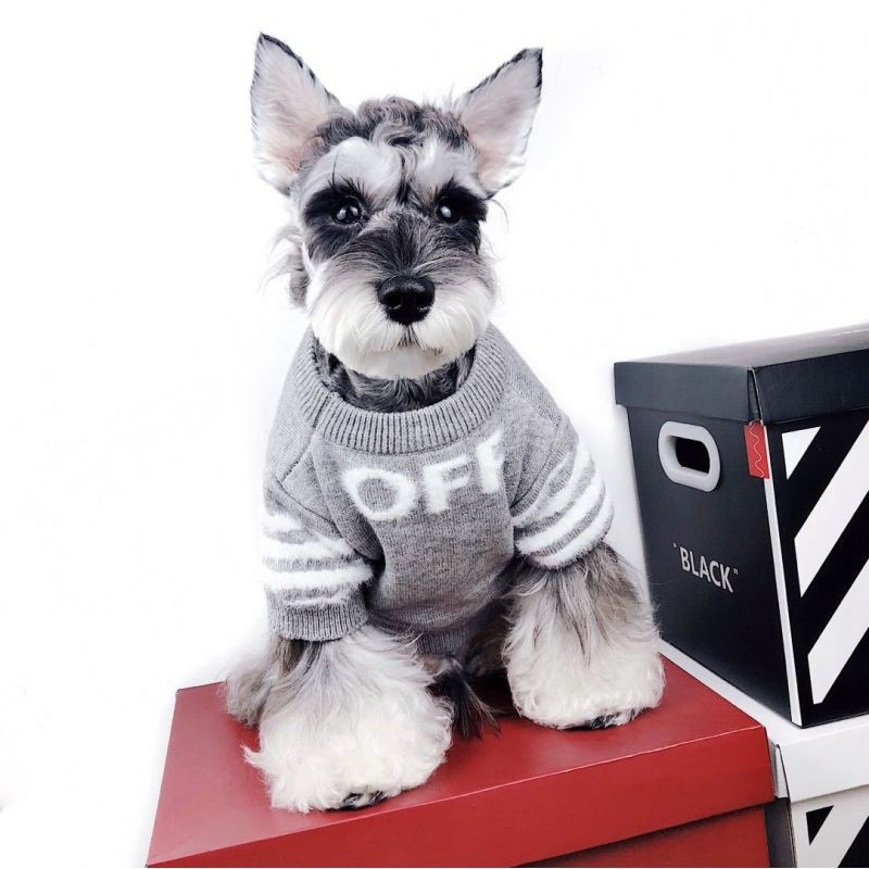 2020 激安 OFF WHITE コピー冬暖かい犬用セーター