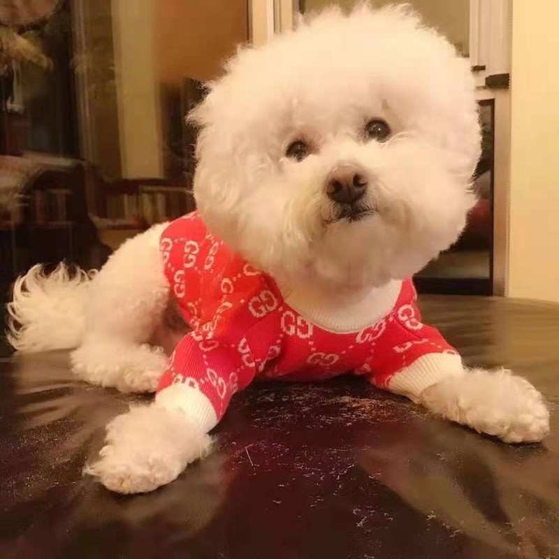 Gucci ドッグセーターふわふわ ペット服