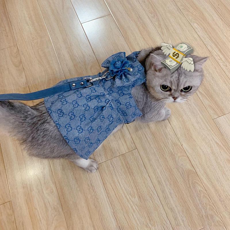 GG ペット服 猫ちゃん用 ドッグウェア スカートチワワ ダックス トイプードル マルチーズ 夏服
