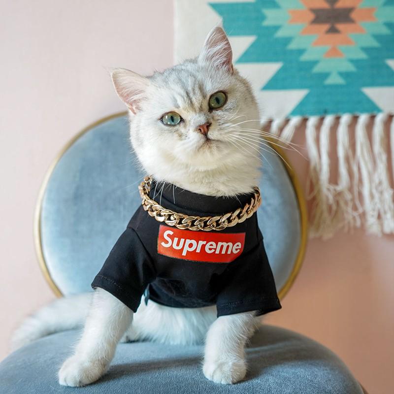 Supreme 犬猫服 Tシャツ 洋服 ブランド ドッグウェア ボックス シュプリーム ペット服