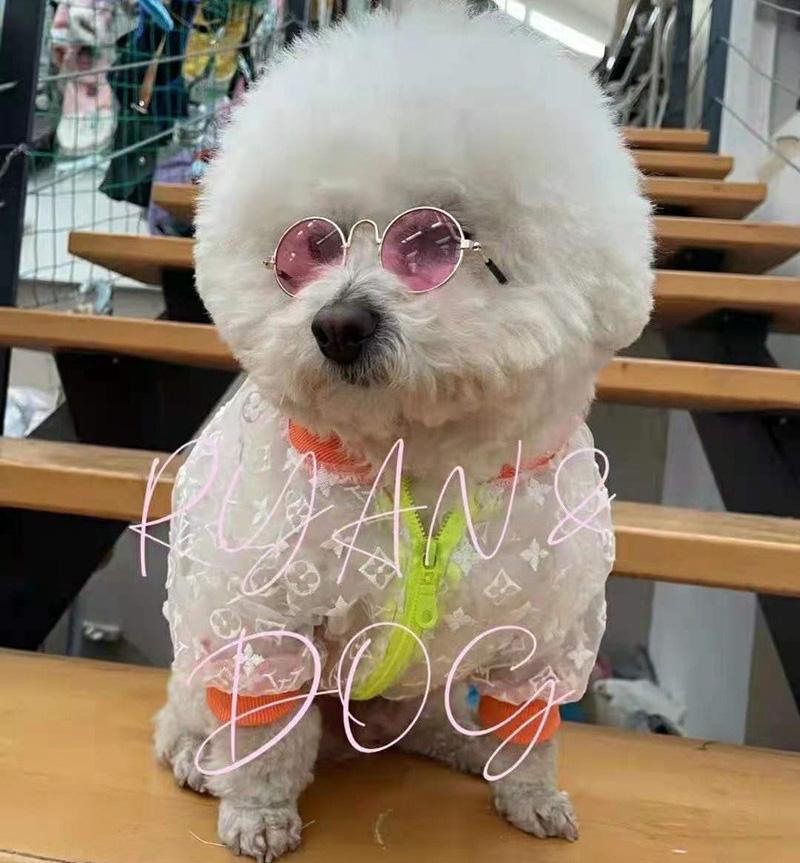 ルイヴィトン ブランド 犬服 ペット 猫犬 レインコート 日焼け防止 ジャケット 衣類 春夏 日焼け LV パーカー