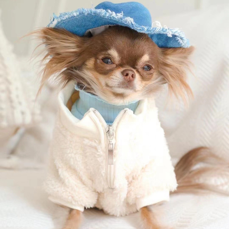 ブランドgg犬服かわいい厚手