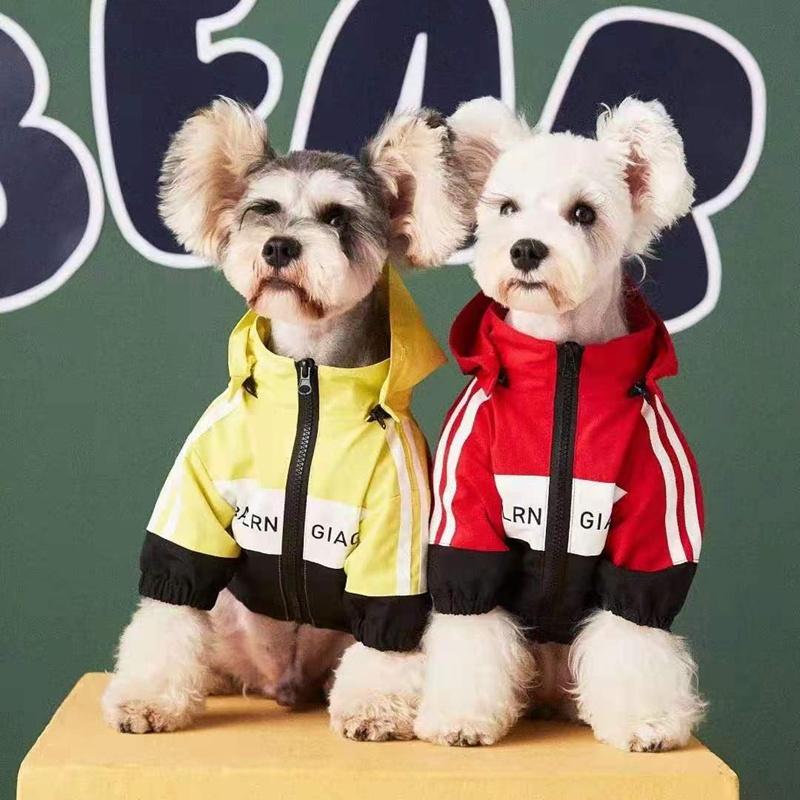 バレンシアガブランド犬服ジャケットかわいい